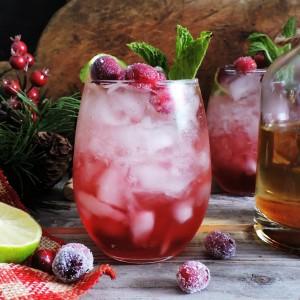 cocktail cranberry gin fizz